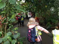 Year 1 Visit the Zoo!